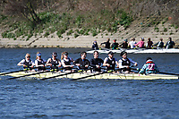 Mixed C 8+  Vets Head 2017
