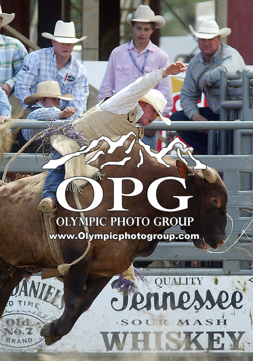 28 August 2005: Kyle Joslin riding the bull Death Row holds on during the Extreme Bulls competition Sunday at the Kitsap County Fair Grounds, Joslin was not able to hold on for 8 seconds during the first round of competition in Bremerton, WA.