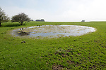 Dew pond pool of water on top of chalk down grassland, Vale of Pewsey, Wiltshire, England, UK