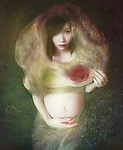 Conceptual image of young pregnant asian woman looking at the camera holding a red flower covered by a silk veil