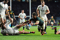 Willie le Roux of South Africa pounces on a loose ballbut the try is disallowed during the QBE International match between England and South Africa at Twickenham Stadium on Saturday 15th November 2014 (Photo by Rob Munro)