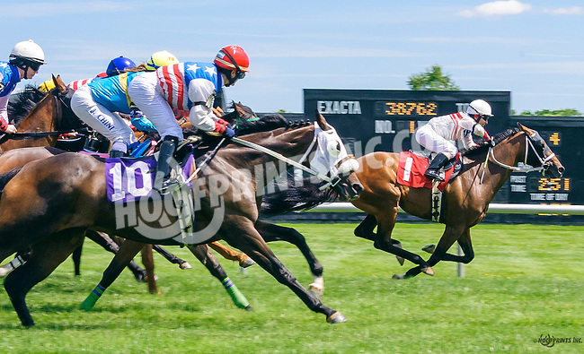 1st time by the grandstand in The International Ladies FEGENTRI  race at Delaware Park on 6/13/16
