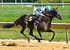 Ivy Pepper winning at Delaware Park on 8/11/16