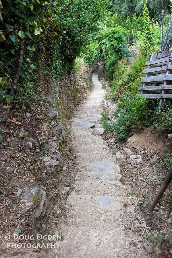 Steep section along the trail, Cinque Terre, Italy