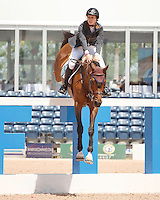 Springtime ridden by Saer Coulter,  USEF trials#2 Wellington Florida. 3-22-2012