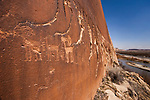 Elaborate ancient Native American petroglyphs of the Basketmaker Culture of about 2000 years ago chipped into the black desert varnish of a cliff face in the Bears Ears National Monument in Utah.  In the distance is the San Juan River.  Pictured here are bighorn sheep.