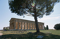 The Temple of Neptune, Paestum.