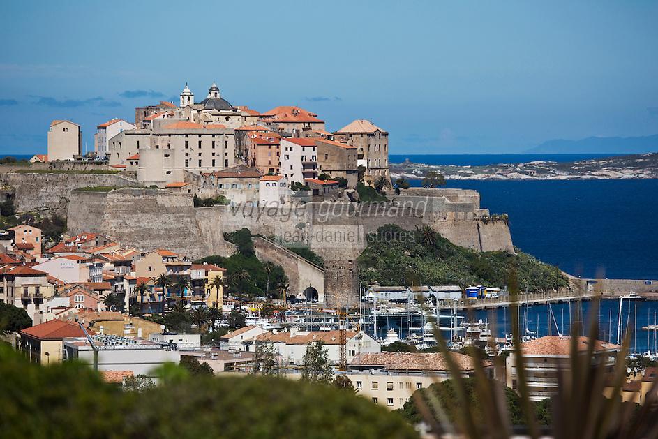 Europe/France/2B/Haute Corse/Balagne/Calvi: La Citadelle et le port vus depuis la terrasse  l' Hôtel: La Villa
