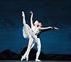 Swan Lake<br /> Mariinsky Ballet <br /> presented by Victor Hochhauser<br /> at The Royal Opera House, London, Great Britain <br /> 25th July 2011<br /> <br /> Viktoria Tereshkina (as Odette/Odile)<br /> Vladimir Shklyarov (as Prince Siegfried)<br /> <br /> Photograph by Elliott Franks