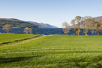 UK, Scotland,June 2012  Stunning views around the famous Loch Ness. No sign of the monster?...Photo Kees Metselaar
