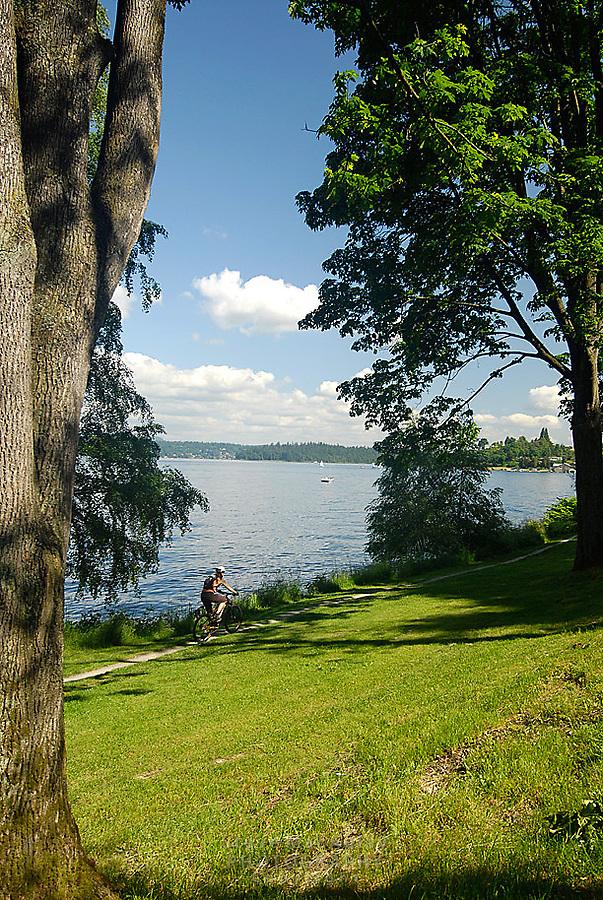 Mountain Biking along side Lake Washington.  Lake Washington Boulevard, Seattle, WA.