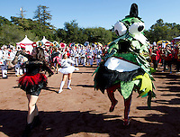 The Stanford Tree perform at Fan Fest before Saturday's, November 23, 2013, Big Game at Stanford University.