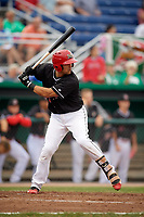 Batavia Muckdogs catcher Igor Baez (29) at bat during a game against the Lowell Spinners on July 14, 2018 at Dwyer Stadium in Batavia, New York.  Lowell defeated Batavia 8-4.  (Mike Janes/Four Seam Images)