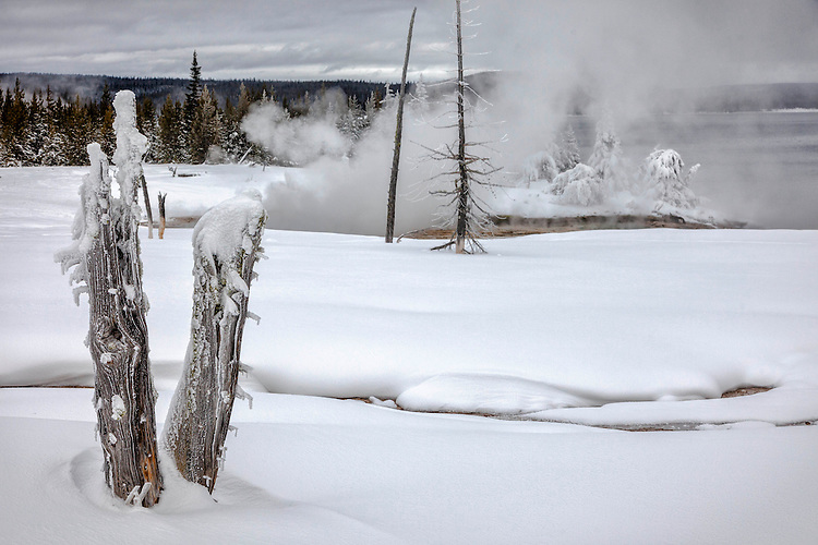 Geothermal areas line the shore of Yellowstone Lake's winter landscape
