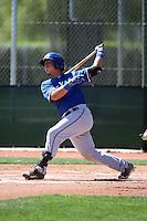 Yohel Pozo - 2016 Texas Rangers (Bill Mitchell)