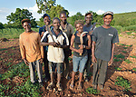 Residents work together to increase their agricultural yield from the rocky fields around Picmy, a village on the Haitian island of La Gonave, where Service Chrétien d'Haïti is working with survivors of Hurricane Matthew, which struck the region in 2016. SCH is a member of the ACT Alliance.