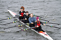 Crew: 277  Star Club  Event: Girls J16 Quads<br /> <br /> Schools' Head of the River 2017<br /> <br /> To purchase this photo, or to see pricing information for Prints and Downloads, click the blue 'Add to Cart' button at the top-right of the page.