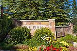 410 Pinecrest