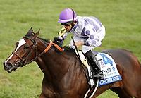 10-10-18 JPMorgan Chase Jessamine Stakes Keeneland