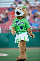 Kane County Cougars mascot Annie during a Midwest League game against the Dayton Dragons on July 20, 2019 at Northwestern Medicine Field in Geneva, Illinois.  Dayton defeated Kane County 1-0.  (Mike Janes/Four Seam Images)
