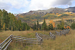Split-rail fence with autumn aspen trees, San Juan Mountains, Colorado.