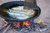 MEXICO, Baja, Magdalena Bay, Pacific Ocean, fresh fish and shrimp being cooked on Isla Magdalena