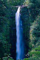 Akaka Falls, Akaka Falls State Park, Big Island, Hawaii, US