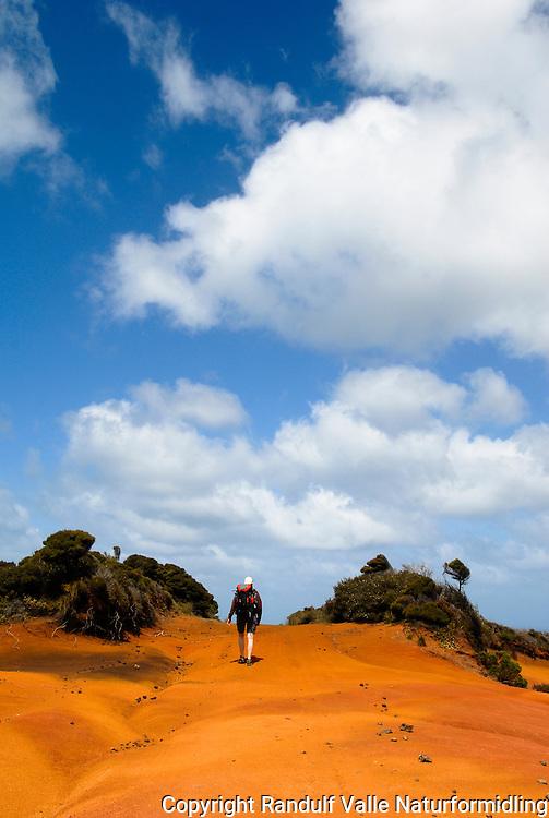 Jente går langs grusvei utenfor North Cape Scientific reserve, helt nord på New Zealand. ---- Girl walking along gravel road outside North Cape Scientific reserve at the northern point of New Zealand.