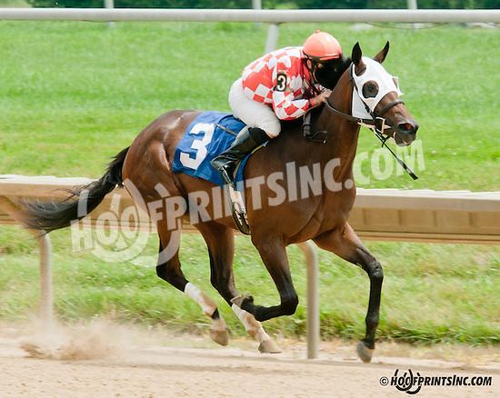 Sensational Value winning at Delaware Park on 7/11/13