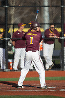 Seth Hoagland (1) of the Iona Gaels at bat against the Rutgers Scarlet Knights at City Park on March 8, 2017 in New Rochelle, New York.  The Scarlet Knights defeated the Gaels 12-3.  (Brian Westerholt/Four Seam Images)