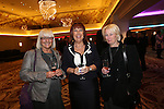 Mecure Holland House<br /> Calon Suite <br /> L-R: Marilyn Collard, Dawn Jaynes &amp; Cath Haines.<br /> 10.10.13<br /> <br /> &copy;Steve Pope-FOTOWALES