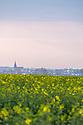 27/04/17 - POLOGNE - Reportage COLZA, Champs de colza dans les environs de Postdam - Photo Jerome CHABANNE