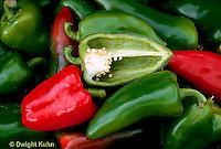 HS41-037x  Pepper - sweet pepper, Lipstick variety