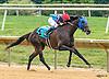 Dynamite Jill winning at Delaware Park on 9/26/16