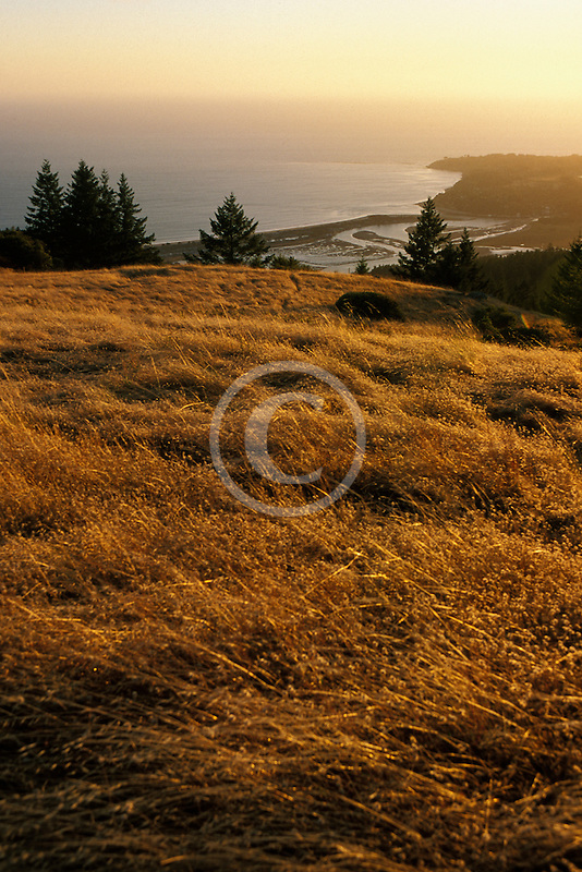 California, Marin County, Bolinas from Mount Tamalpais