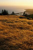 California, Marin County, Bolinas from Mount Tamalpais