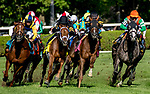 August 24, 2019 : The field turns for home in the Sword Dancer Stakes during Travers Stakes Day at Saratoga Racecourse in Saratoga Springs, New York. Dan Heary/Eclipse Sportswire/CSM