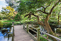 Moonviewing Garden with deck viewing platform in San Francisco Botanical Garden