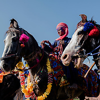 ANANDPUR SAHIB, INDIA - March 06, 2015: Nihangs, or &quot;Sikh warriors&quot; participate in a horse riding competition during Hola Mohalla celebrations on March 06, 2015 in Anandpur Sahib, India. Hola Mahalla or simply Hola is a Sikh event, which takes place on the first of the lunar month of Chet, which usually falls in March, and sometimes coincides with the Sikh New Year. It was started by Guru Gobind Singh the tenth Sikh guru in 1701 AD. Hola Mohalla is a three day Sikh festival, in which Nihang Sikh 'warriors' perform Gatka (mock encounters with real weapons), tent pegging and bareback horse-riding, which usually falls in March coinciding with or following the Hindu festival of Holi. <br /> Daniel Berehulak for The New York Times