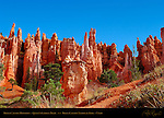 Bryce Canyon Hoodoos, Queen's Garden Trail, Bryce Canyon National Park, Utah