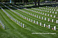65095-01713 Flags on Memorial Day at Jefferson Barracks National Cemetery, St Louis, MO