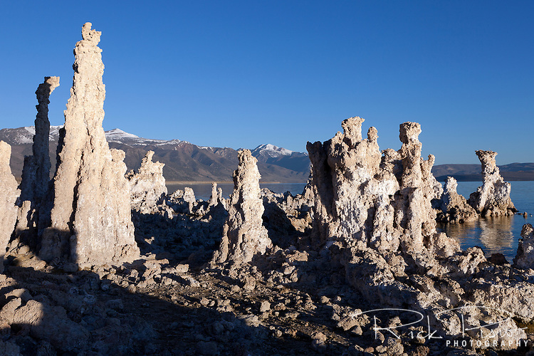 Tufa towers along Mono Lake's southern shore. The Mono Laka Tufa Towers were formed when the area was covered with water. Underwater springs rich in calcium chemically reacted with the carbonates in the lake and over a period of decades created these calcium carbonate, or limestone, towers. Some towers reach heights of over 30 feet. The towers were exposed when water was diverted from Mono Lake to Southern California, drastically lowering the water level.
