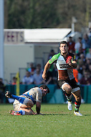Danny Care of Harlequins chases after his chip during the Aviva Premiership match between Harlequins and Bath Rugby at The Twickenham Stoop on Saturday 24th March 2012 (Photo by Rob Munro)