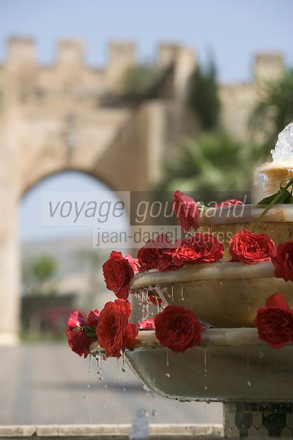 Afrique/Afrique du Nord/Maroc/Fèz:  Détail Fontaine et roses du Palais Jamail et porte de la médina