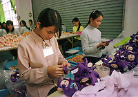 China Telly Tubby Factory