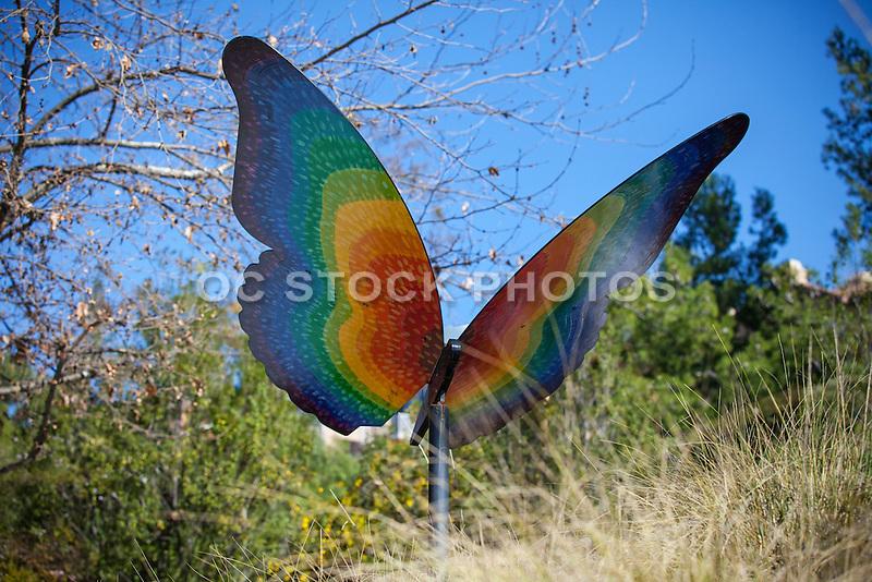 Butterfly Garden in Oso Creek Trail Mission Viejo