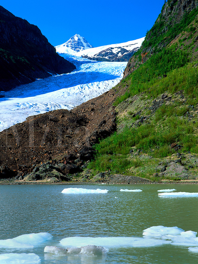 Art in Nature 9607-0186 - Bear Glacier, Northern Rocky Mountains, descends a hillside into a body of water where ice floats. British Columbia, Canada.