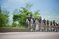 Team Movistar controls/paces the peloton<br /> <br /> 2014 Giro d'Italia <br /> stage 17: Sarnonico - Vittori Veneto (208km)
