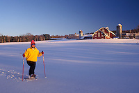 snowshoe, Vermont, VT, Woman snowshoeing in a snow-covered field in front of a red barn on a farm in winter in Barnet.