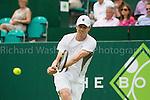 Sam Querrey - Tennis